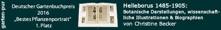 Amazon-Link für Helleborus 1485-1905
